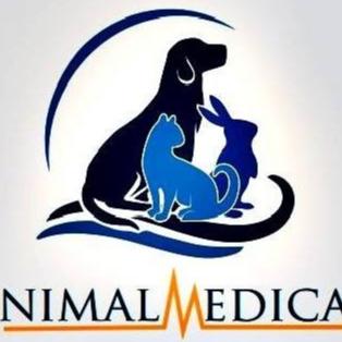 Animal Medical